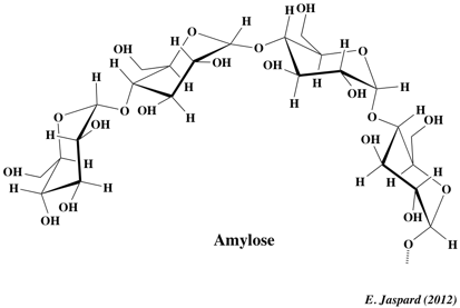Carbohydrates saccharides nomenclature structure Education
