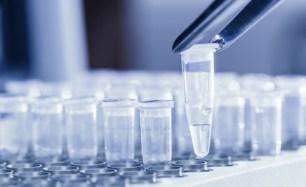 PCR_content