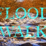 FLOOD WALK!