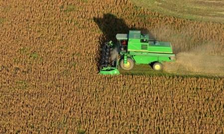 agroindustria argentina