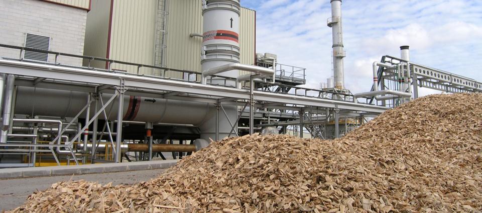 planta-de-biomasa-960