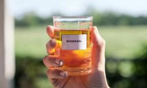 aceite recoleccion biodiesel cordoba