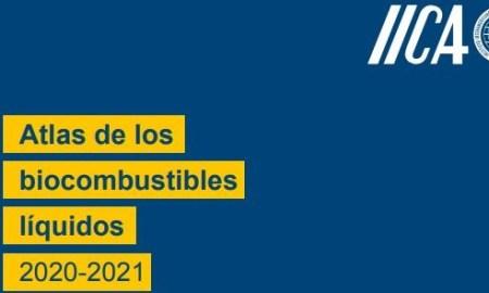 atlas de los biocombustibles liquidos iica biodiesel