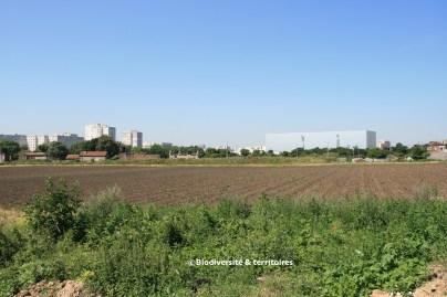 Exploitation agricole Kersanté au coeur de la ZAC