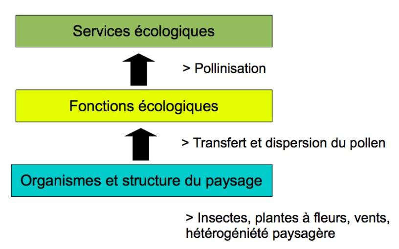 service écologique bise