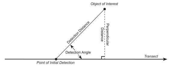 Angle distance calculator