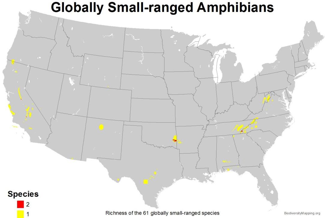 amphibians_usa_globally_small_large