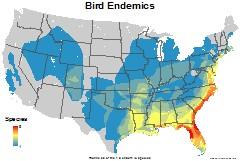 birds_usa_endemics_thumb