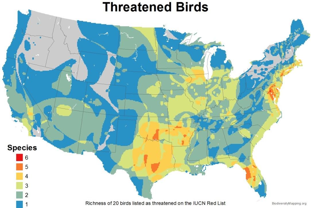 birds_usa_threatened_large