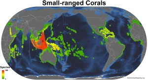 corals_small_ranged