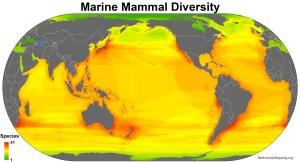 marine_mammals_all_spp