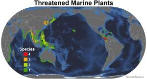 marine_plants_threatened