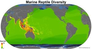 marine_reptiles_all_spp