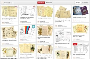 Treasure trove of species and biodiversity info on World Archive of Sciences