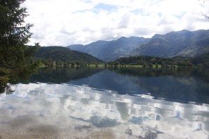 Photo of Lake Bohinj, Triglav National Park, Slovenia, showing calm water in the foreground with forested hills on the shore and rising hills beyond.