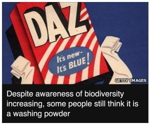 mock laundry powder box labeled daz caption reads despite awareness of biodiversity increasing some people still think it is a washing powder