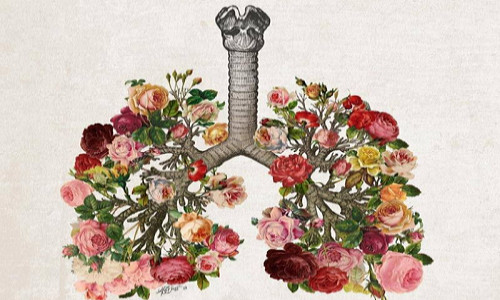 Flower And Lung