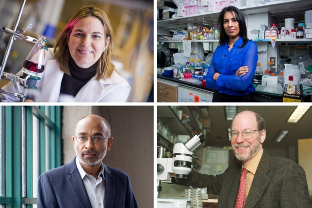 Four MIT faculty are among the the 168 fellows of the National Academy of Inventors elected in 2015. They have been honored for their