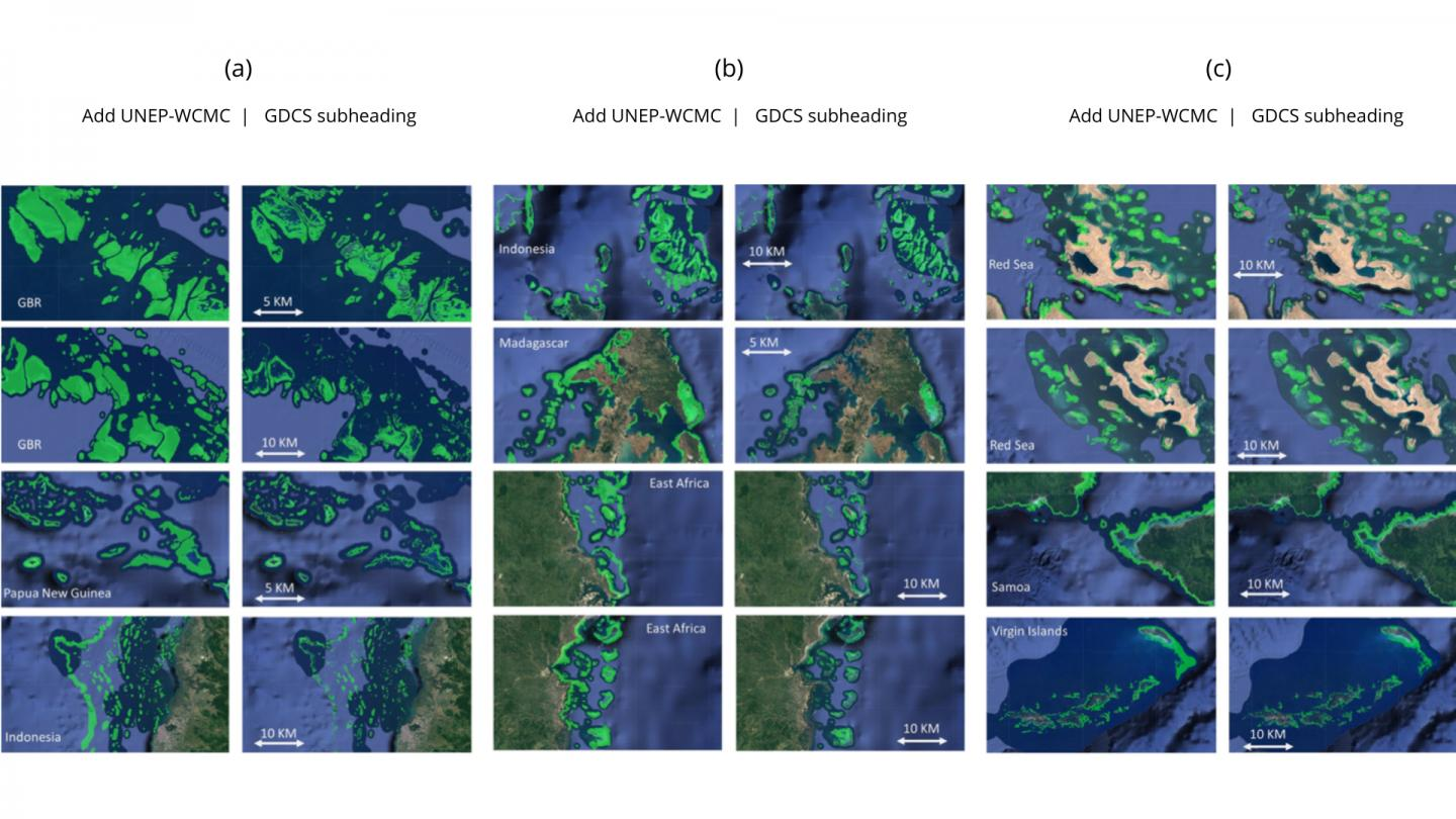 Location and extent of coral reefs mapped worldwide using advanced AI