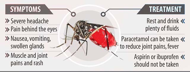 What-is-Dengue?-Cause-Symptoms-and-treatment-of-Dengue