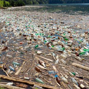 10447380 - beautiful landscape ruined by  trash pollution, bicaz lake, romania