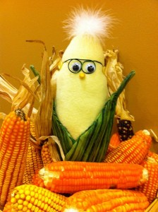 Frank N. Foode poses with some orange maize that has been bred to express very high levels of beta-carotene. Photo by Anastasia Bodnar.