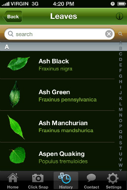 identify plants with your smartphone