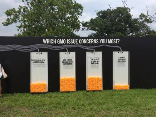 Chipotle asks people to vote on how scared of GMOs they managed to make them at the festival.