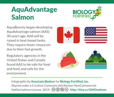 AquAdvantage salmon regulation