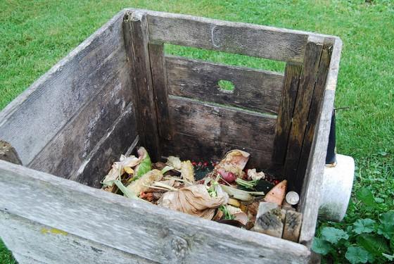 biofriendly food waste compost garden gardening