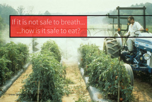 Pesticides and chemicals on our food
