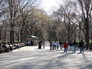 go for a walk walking park