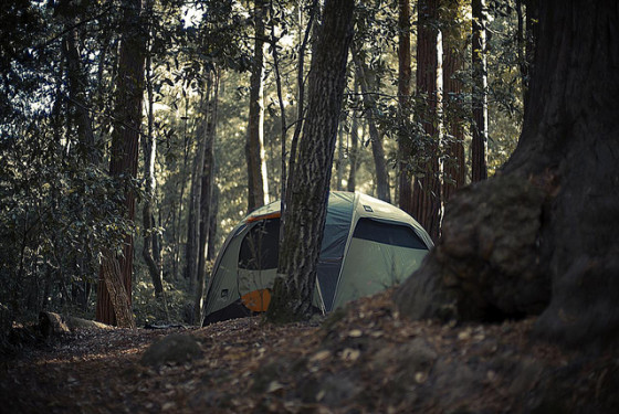 green camping tent outdoors