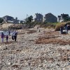 Biofriendly Action of the Week: International Coastal Cleanup Day