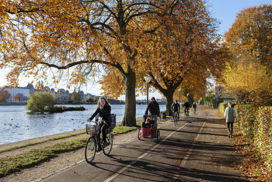 Environmental and Health Reasons to Start Riding Your Bicycle More