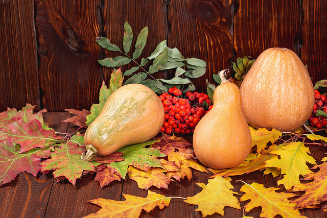 gourds and leaves