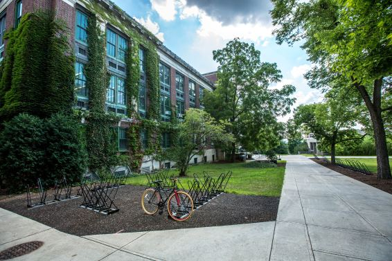 How To Cultivate A Green Lifestyle On College Campuses