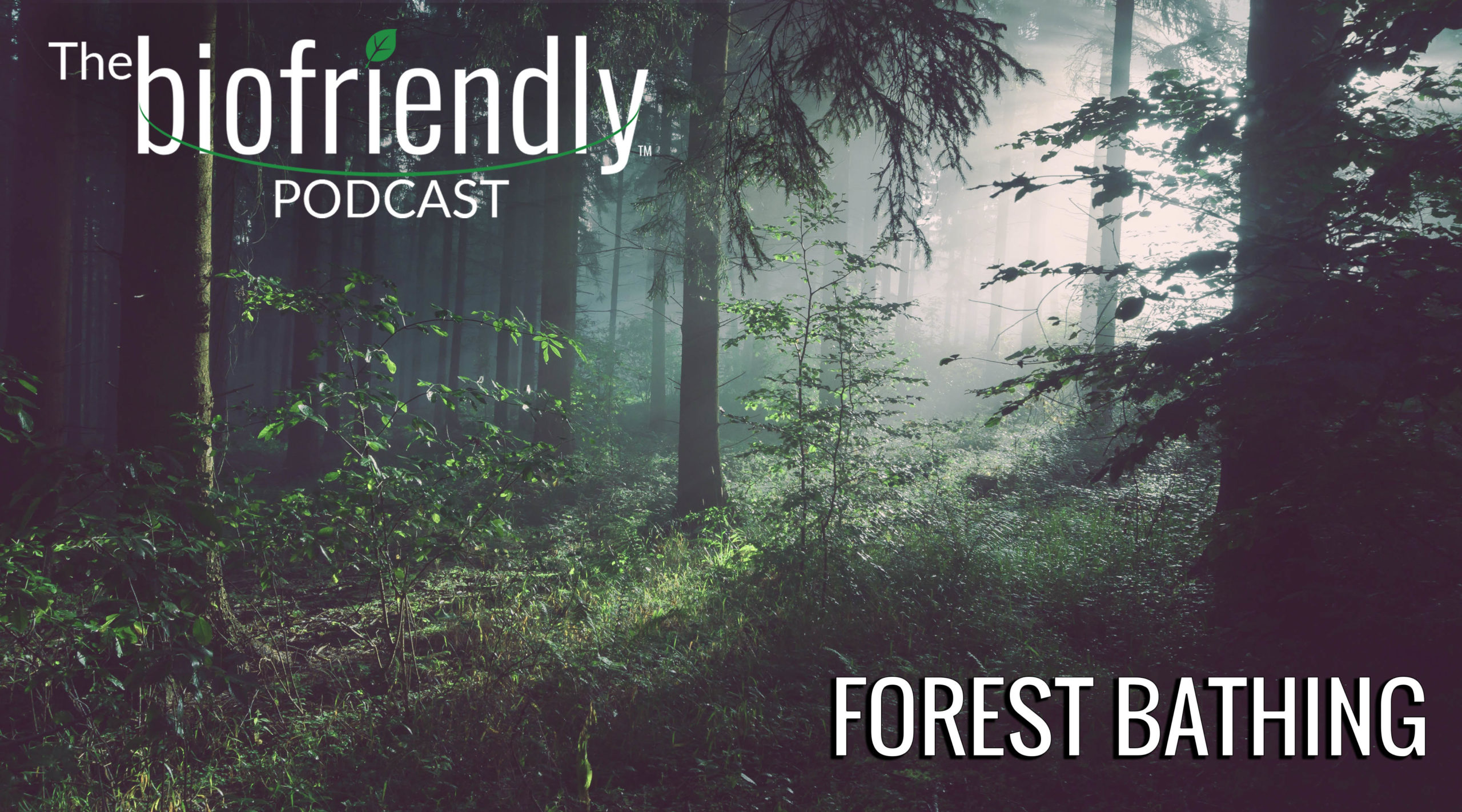 The Biofriendly Podcast - Episode 49 - Forest Bathing