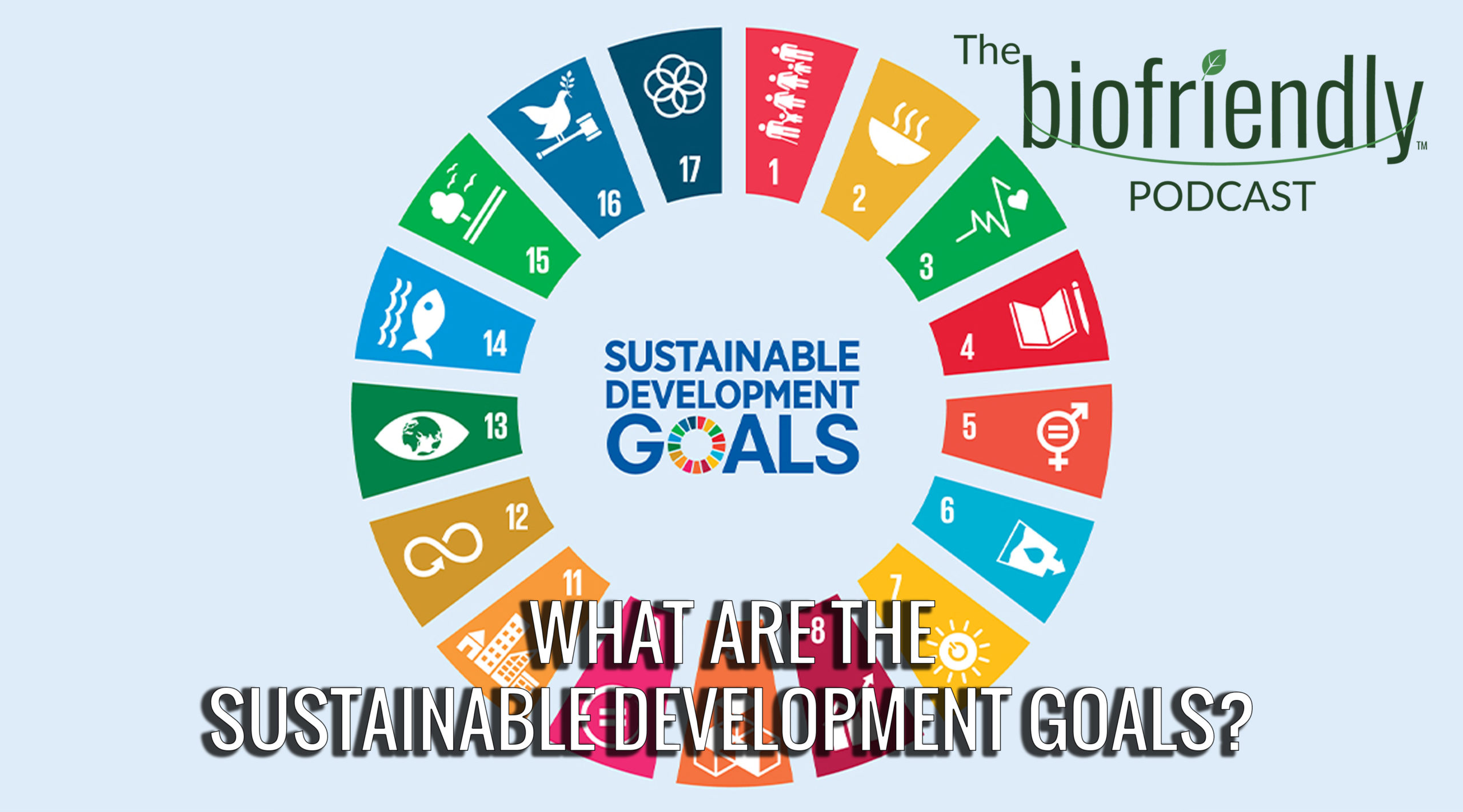 The Biofriendly Podcast - Episode 56 - What Are The Sustainable Development Goals?