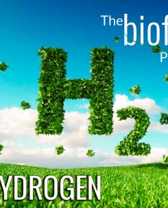 The Biofriendly Podcast - Episode 85 - Green Hydrogen