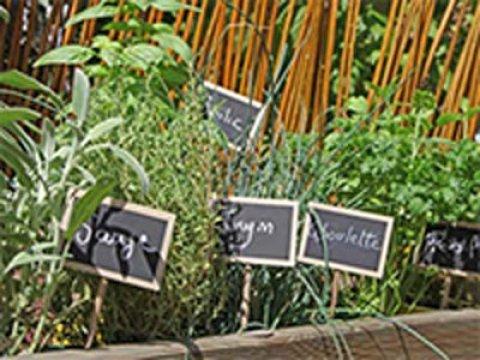 hochbeet bepflanzen stauden jetzt hochbeet richtig bepflanzen! ▻ schritt für schritt