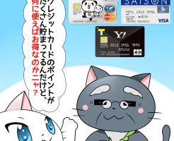 白猫が博士に 「クレジットカードのポイントがたくさん貯まってるんだけど、何に使えばお得なのかニャ?」 と聞いているシーン(背景に楽天カードやYahoo!JAPANカード、セゾンカードインターナショナルがある)