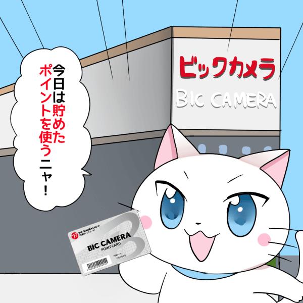 背景にビックカメラがあり、 白猫が「今日は貯めたポイントを使いニャ!」 とビックカメラのポイントカードを持ちながら店に入っていくシーン