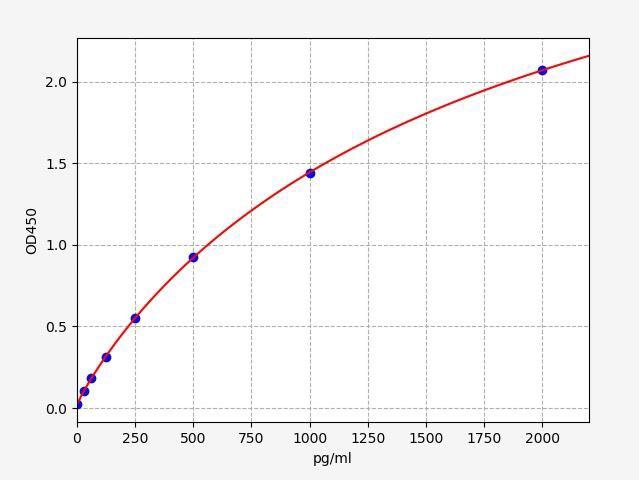 Human SATB2(DNA-binding protein SATB2) ELISA Kit