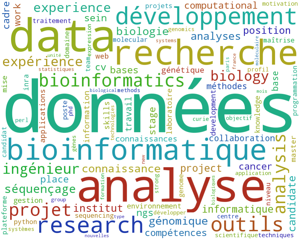 wordcloud general des descriptions