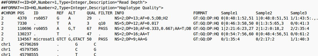 Exemple d'un fichier au format vcf (source : https://en.wikipedia.org/wiki/Variant_Call_Format )