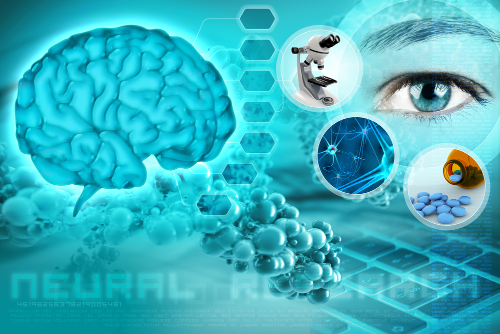 Why Neural Stem Cells are Essential for Drug Discovery & Drug Delivery Applications