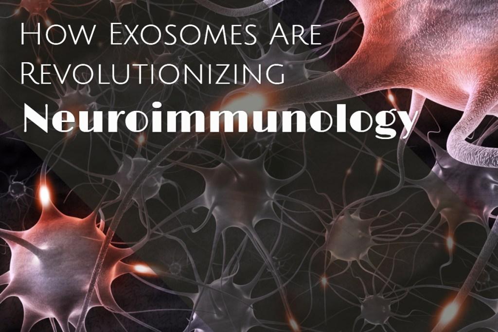 How Exosomes Are Revolutionizing Neuroimmunology with Dr. Stefano Pluchino