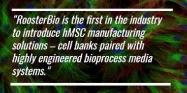RoosterBio hMSC Manufacturing