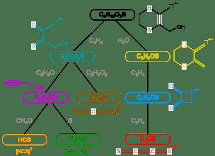 Fragmentierungs eines Moleküls
